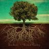 Couverture de l'album Roots of Worship