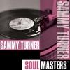 Couverture de l'album Soul Masters: Sammy Turner
