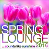 Couverture de l'album Spring Lounge 2016 - Sounds Like Sunshine