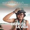 Cover of the track Disfruta La Vida (feat. J Alvarez & Flex)
