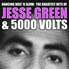 Couverture de l'album Dancing Nice 'n Slow: the Greatest Hits of Jesse Green & 5000 Volts