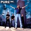 Couverture de l'album Pure Inc.