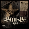 Cover of the track Fire (feat. Rick Ross, 2 Chainz & Serani)