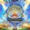 Couverture de l'album Self Awareness