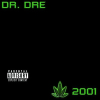 Cover of the track The Chronic