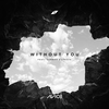 Couverture du titre Without You (feat. Sandro Cavazza) @