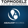 Cover of the album Little Wonders - Single
