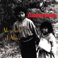 Cover of the track Alegrando el Alma