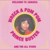 Cover of the album Wreck a Pum Pum