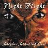 Couverture de l'album Night Flight