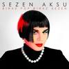 Couverture de l'album Biraz Pop Biraz Sezen
