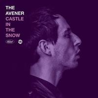 Couverture du titre Castle In the Snow