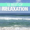 Couverture de l'album 12 Best of Relaxation