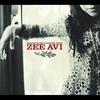 Cover of the album Zee Avi