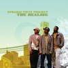 Cover of the album The Healing (Bonus Track Version)