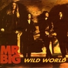 Cover of the track Wild World