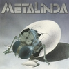 Cover of the album Metalinda