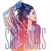 Couverture de l'album Salt Ashes
