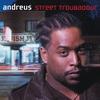 Cover of the album Street Troubadour