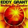 Couverture de l'album Walking on Sunshine
