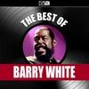Couverture de l'album The Best of Barry White