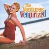 Couverture de l'album Venturized
