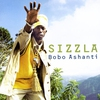 Couverture de l'album Bobo Ashanti