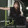 Cover of the track Ahla Ma Fi el Ayam