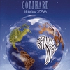 Couverture de l'album Human Zoo