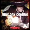 Couverture de l'album New Day Coming