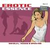Couverture de l'album Erotic Essence Part 5 (Sensual Moods & Grooves)