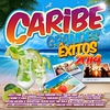 Cover of the album Caribe Gandes Êxitos 2014