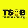 Couverture de l'album The Sound of Belgium, Vol. 2