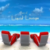 Couverture de l'album Best of Liquid Lounge
