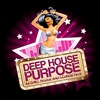 Cover of the album Deep House Purpose (65 Chill House and Lounge Hits)