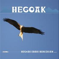 Cover of the track Hegoak Ebaki Banizkian...