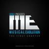Couverture de l'album Musical Evolution
