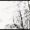 Couverture de l'album The White EP