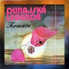 Couverture de l'album Dunajská legenda