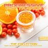 Couverture de l'album Progressive PsyTrance, Vol.2 (The Collection of Finest Psytrance and Goatrance)
