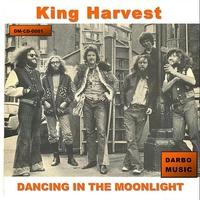 Couverture du titre Dancing In the Moonlight - Single