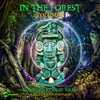 Cover of the album In the Forest, Vol. 1 - compiled by Dual Head (aka Zorflux & John Phantasm)