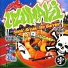 Couverture de l'album Sonic Break the Barrier