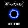 Couverture de l'album Into the Fire