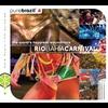 Couverture de l'album Pure Brazil 2: Rio Bahia Carnival