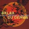 Cover of the album La salsa du démon - Single