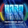 Couverture de l'album Hard Bass 2017