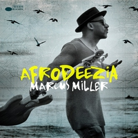 Cover of the track Afrodeezia