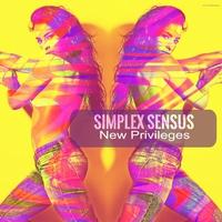 Couverture du titre New Privileges - Single