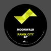 Couverture de l'album Panik City - Single